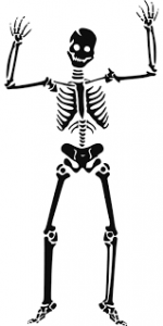 black skeleton on white background