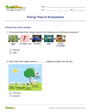 Energy Flow In Ecosystems - biology - Third Grade