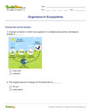 Organisms In Ecosystems - biology - Fourth Grade